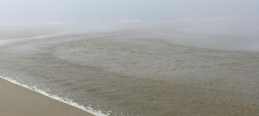 Oregon Beaches: Newport toWaldport