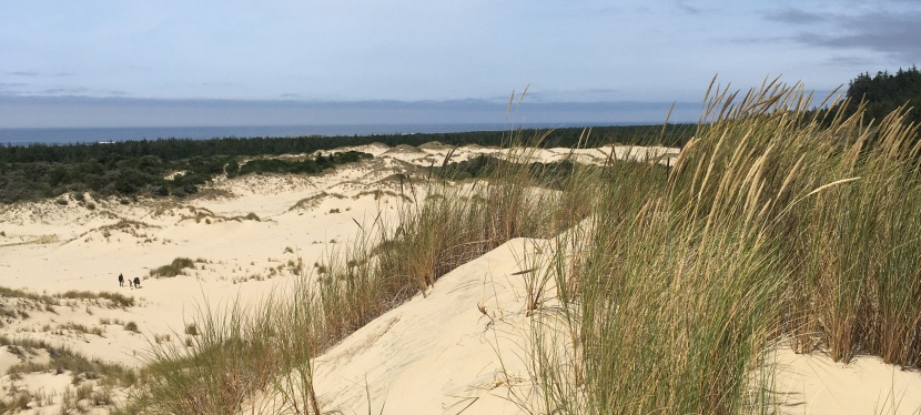 Oregon Dunes National Recreation Area: Day Use